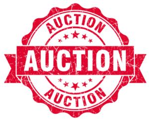 Live Auction @ Lake Redding Park - Eastside | Redding | California | United States